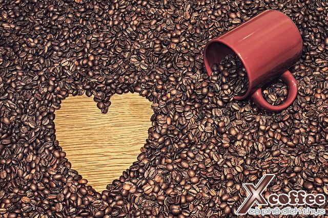 sức khỏe và cà phê