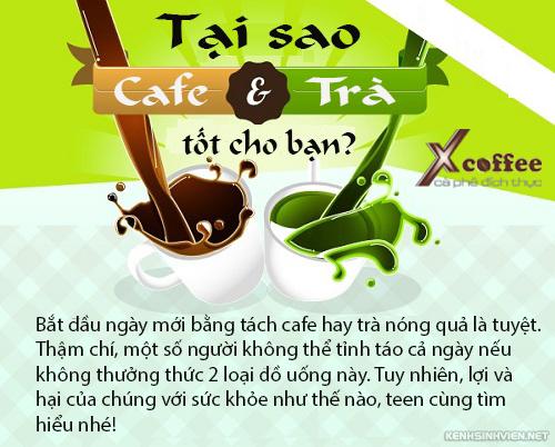 Trà và cà phê, thức uống tuyệt vời cho teen!