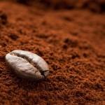 Cách bảo quản cà phê xay luôn thơm ngon tại nhà