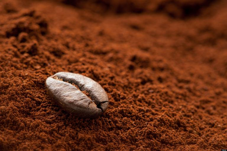 A solitary coffee bean on a mound of fresh coffee grounds